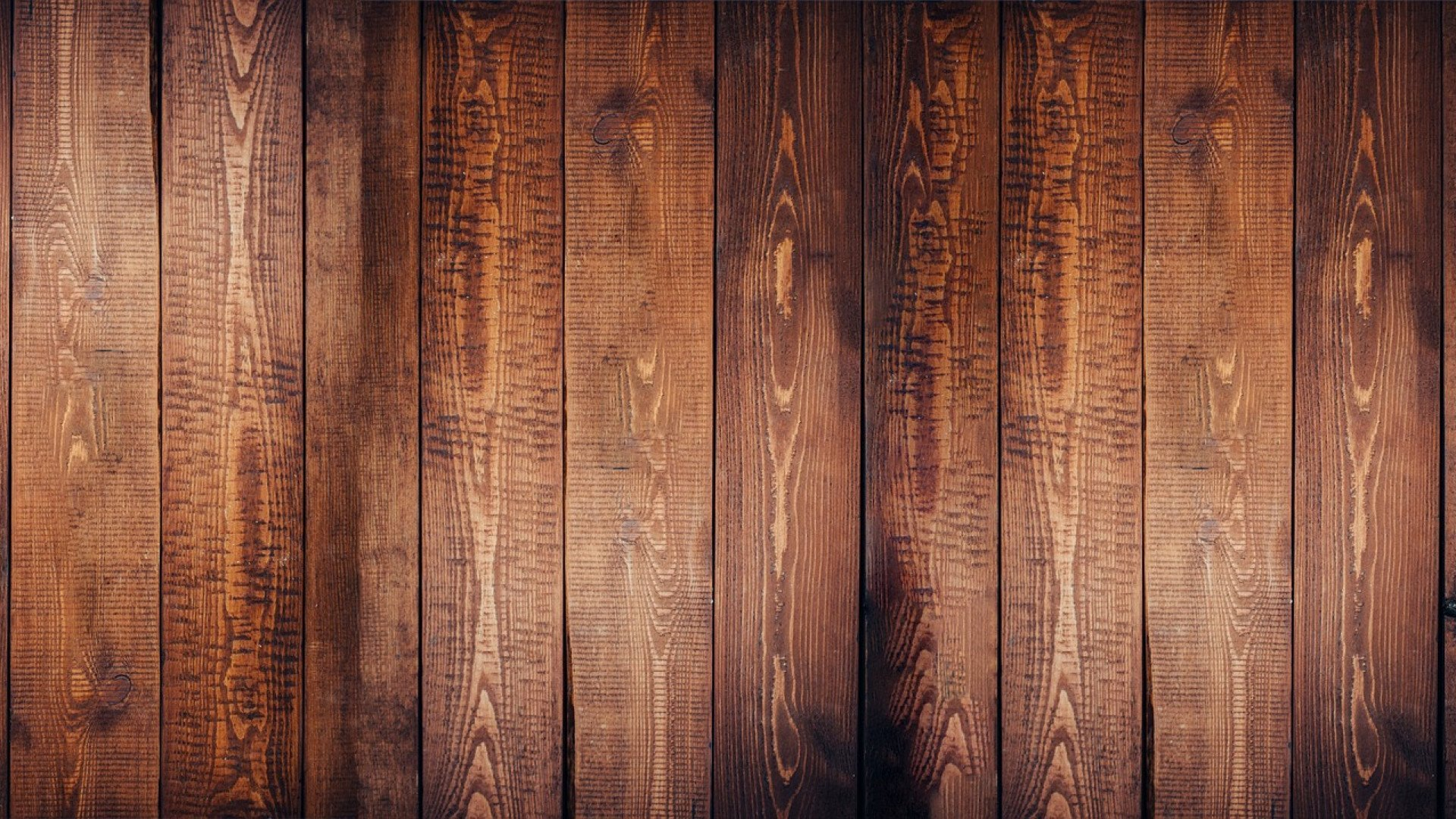 Maison en bois : le choix du confort et de l'élégance 1