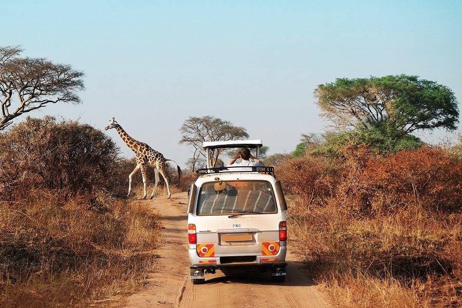 Quelle est la meilleure période pour visiter la Namibie ? 29